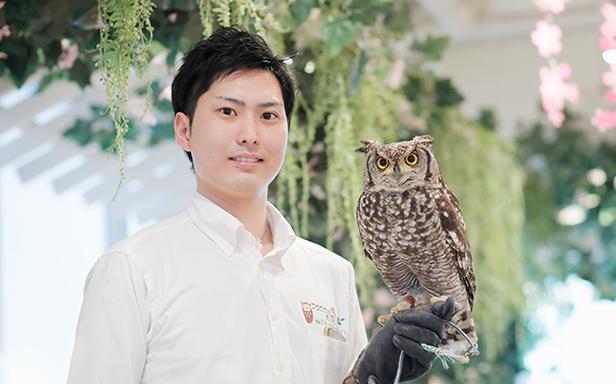 フクロウのお庭 owl's garden